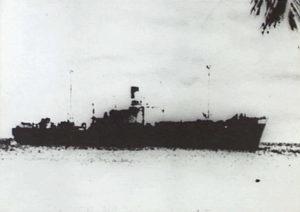 Requin d'acier contre croiseurs auxiliaires allemands